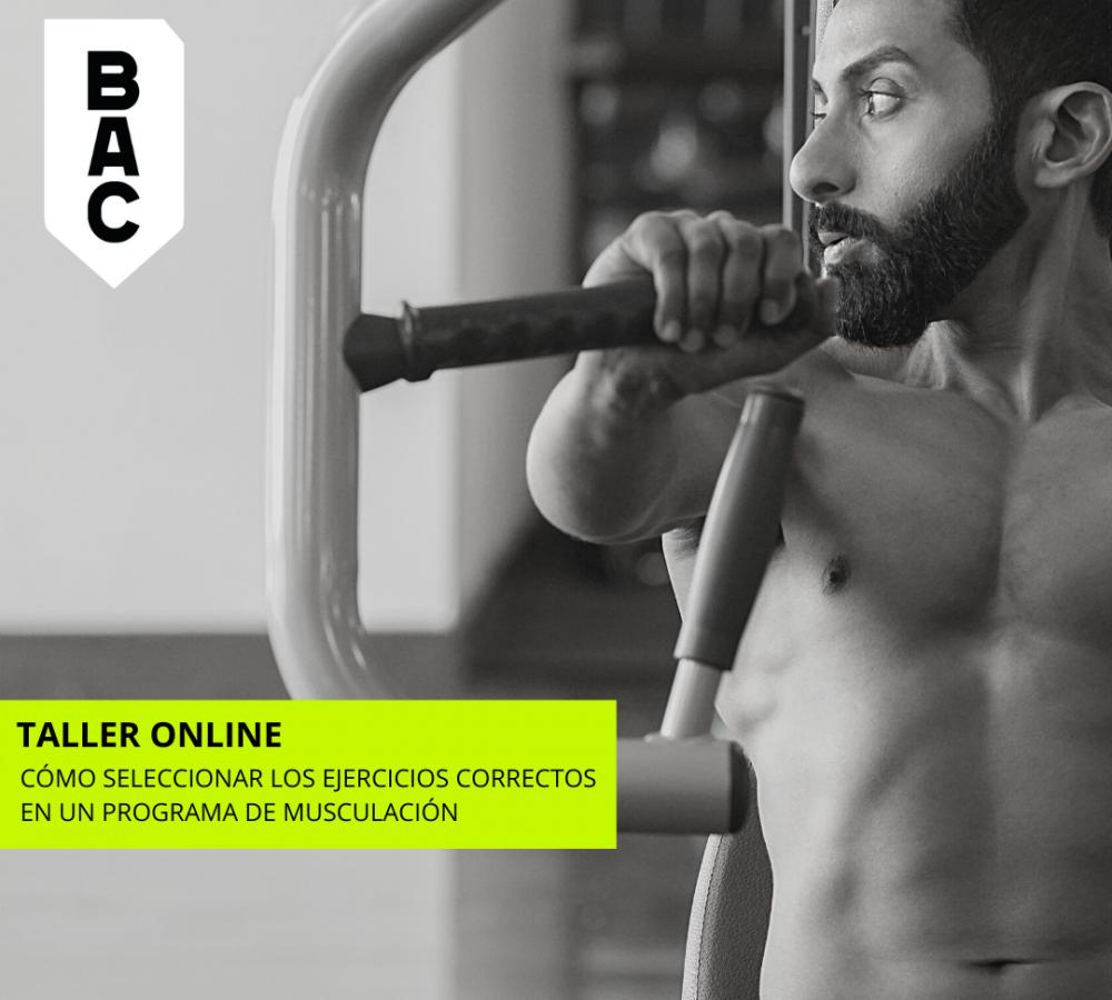 cómo seleccionar los ejercicios físicos correctos en un programa de musculación